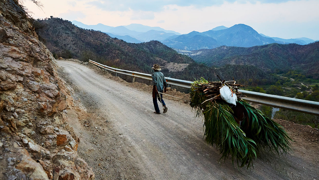 Man pulling cart along mountainside dirt road in high elevation Oaxaca, Mexico